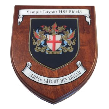 Presentation shield with shield shaped centrepiece and two seperate scrolls.
